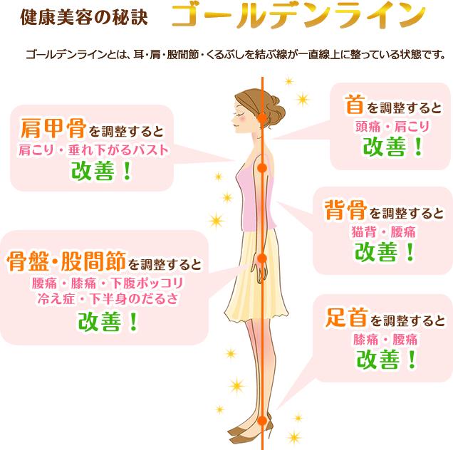 武蔵新城 ヒロ整骨院・整体院がおすすめするゴールデンライン